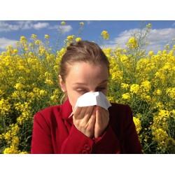 Synergie: soulage les crises d'asthme et l'emphysème