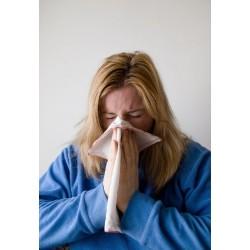 Synergie: libère les sinus encombrés
