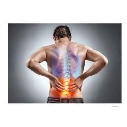 Articulations douloureuses et arthrose : favorise votre confort articulaire